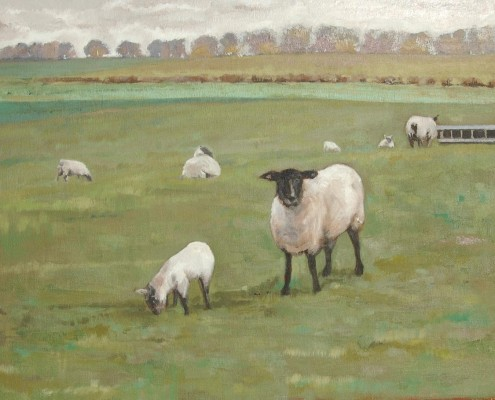 Spring Lambs at Tixall Farm by Lisa Oakley