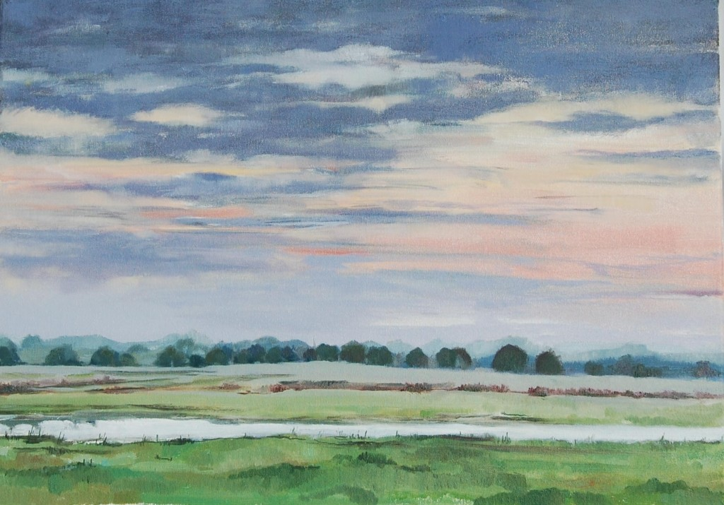 Radford Meadows Flood Plain by Lisa Oakley Staffordshire Plein Air Artist
