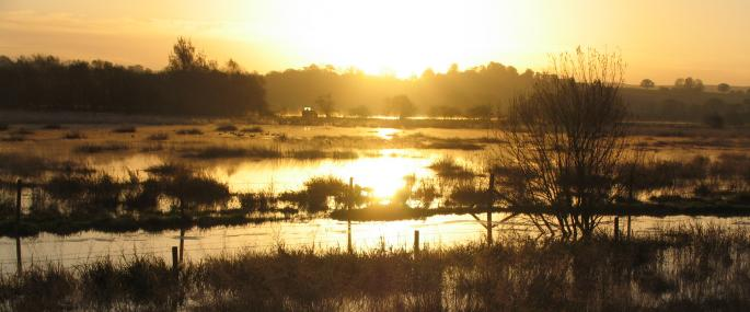 River Penk flood plain
